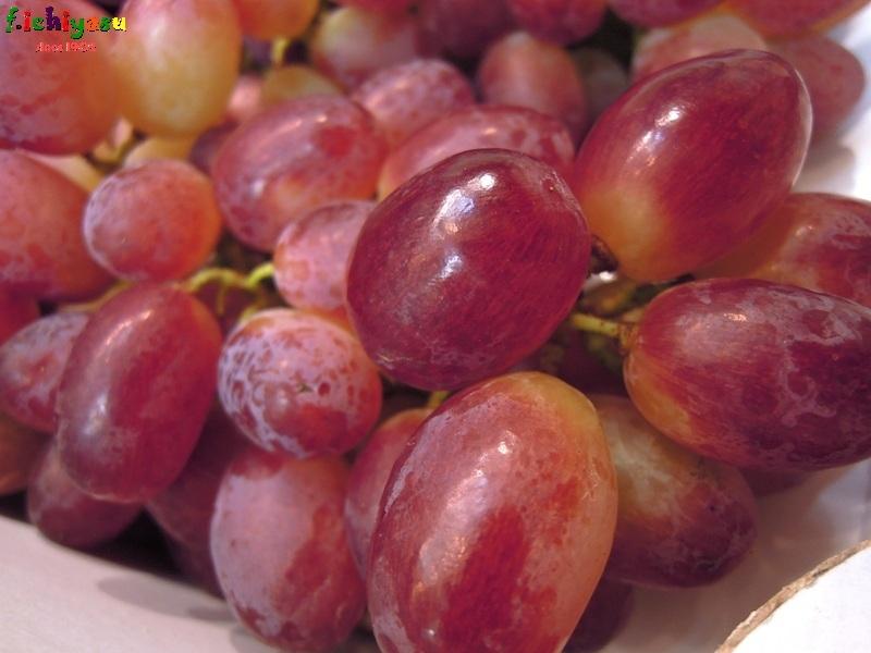 秋の味覚「甲斐路」 Today's Fruits ♪