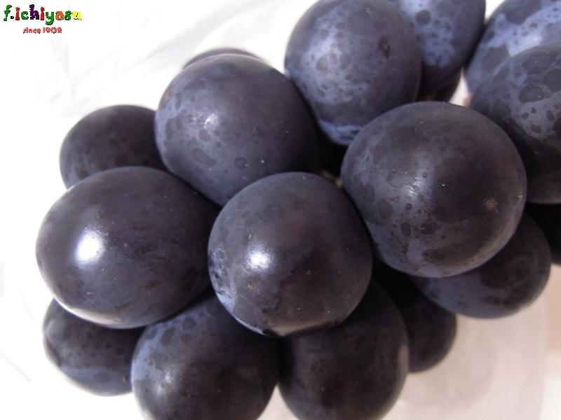 藤稔×ピオーネで「ブラックビート」 Today's Fruits ♪