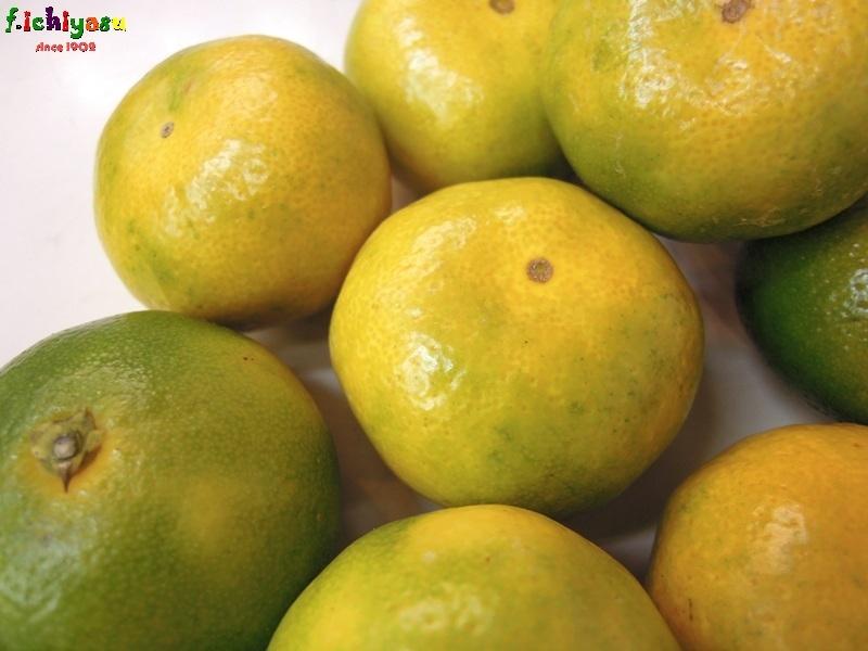 「日南の姫」出たよ (^^♪ Today's Fruits ♪