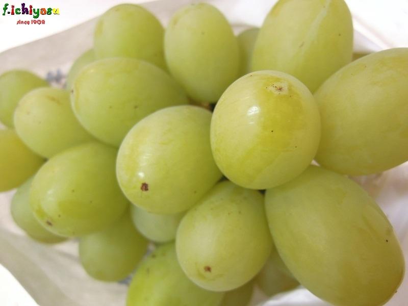 これは美味い!「翠峰」 Today's Fruits ♪