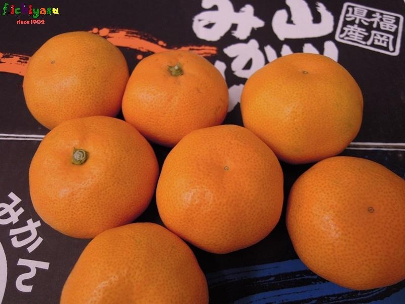 「北原早生」出たよ (^^♪ Today's Fruits ♪