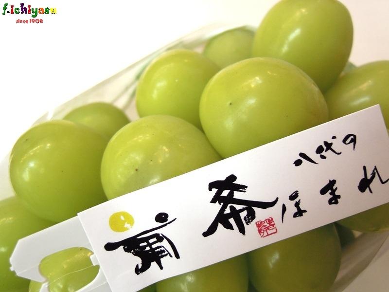 シャインマスカット「葡希」 Today's Fruits ♪