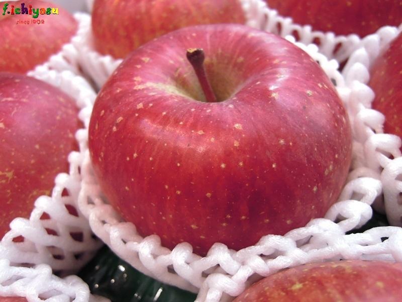 「サンふじ」のシーズンですね (^^♪ Today's Fruits ♪