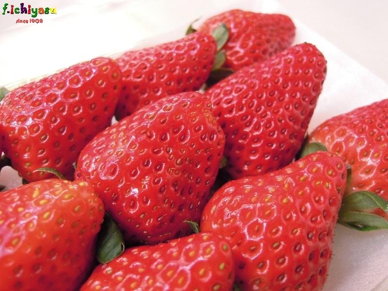 「紅ほっぺ」有り〼 Today's Fruits ♪