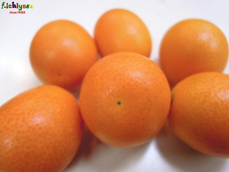 風邪の予防に「金柑」 Today's Fruits ♪