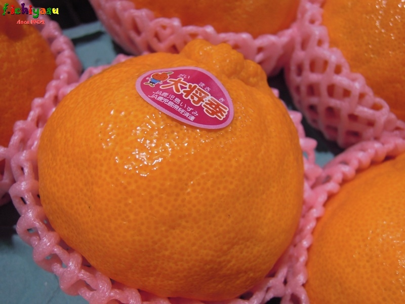 鹿児島いずみ「大将季」 Today's Fruits ♪