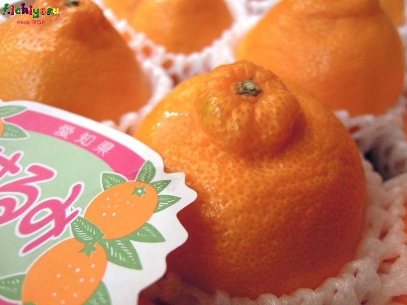 デコポンの妹「はるみ」 Today's Fruits ♪
