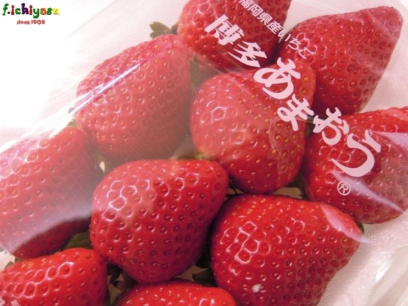 イチゴの定番「博多 あまおう」 Today's Fruits ♪