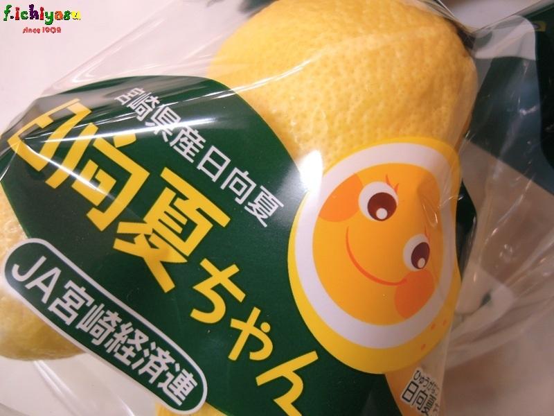 「日向夏ちゃん」 Today's Fruits ♪