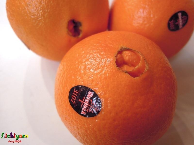 カリフォルニア産の「ネーブルオレンジ」 Today's Fruits ♪