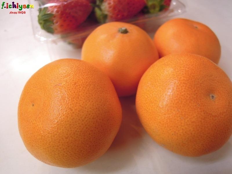 可愛い「せとか」有り〼 Today's Fruits ♪