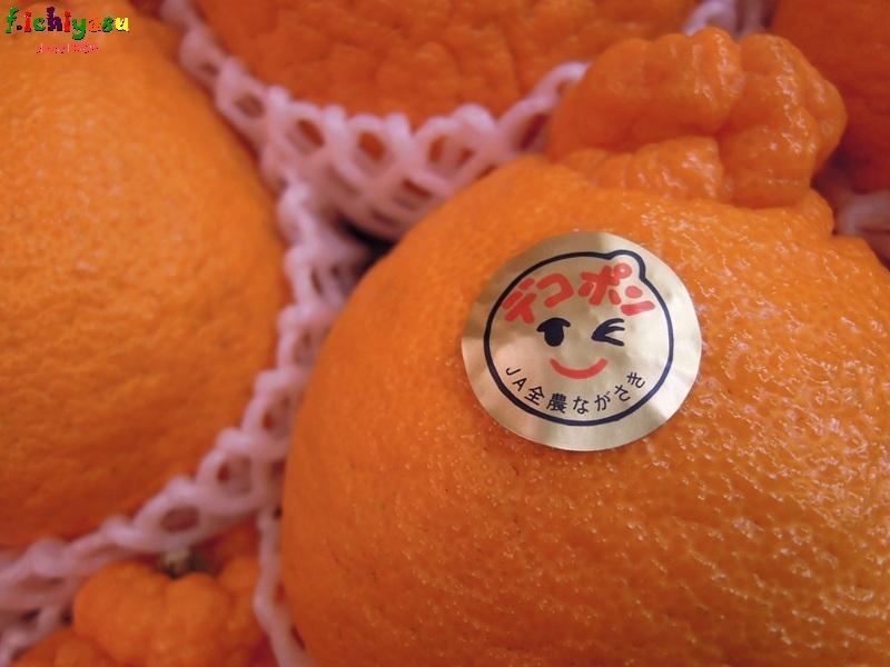長崎の「デコポン」入荷! Today's Fruits ♪