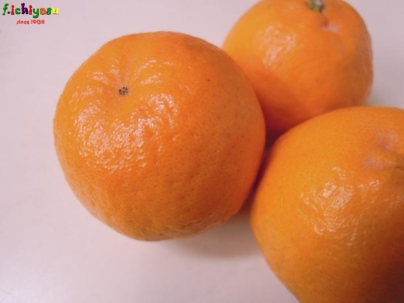 JA長崎西彼の「ポンカン」 Today's Fruits ♪