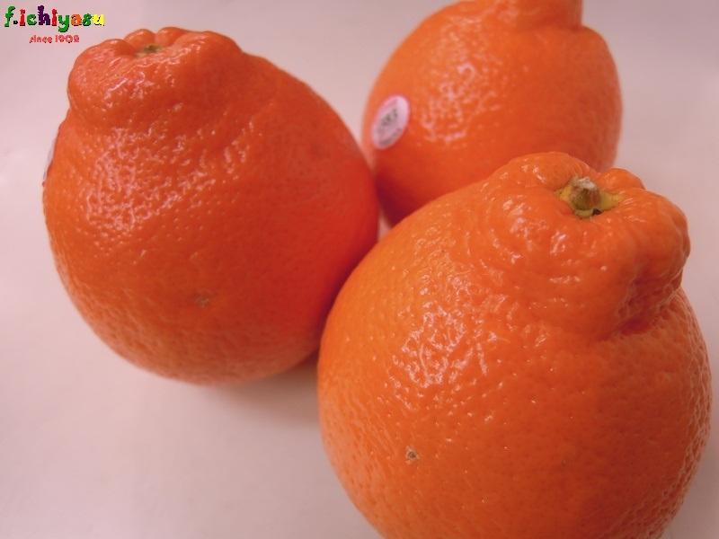 「ミネオラ」と覚えてね (^^♪ Today's Fruits ♪