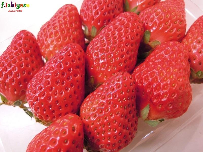今週は「イチゴ」! Today's Fruits ♪