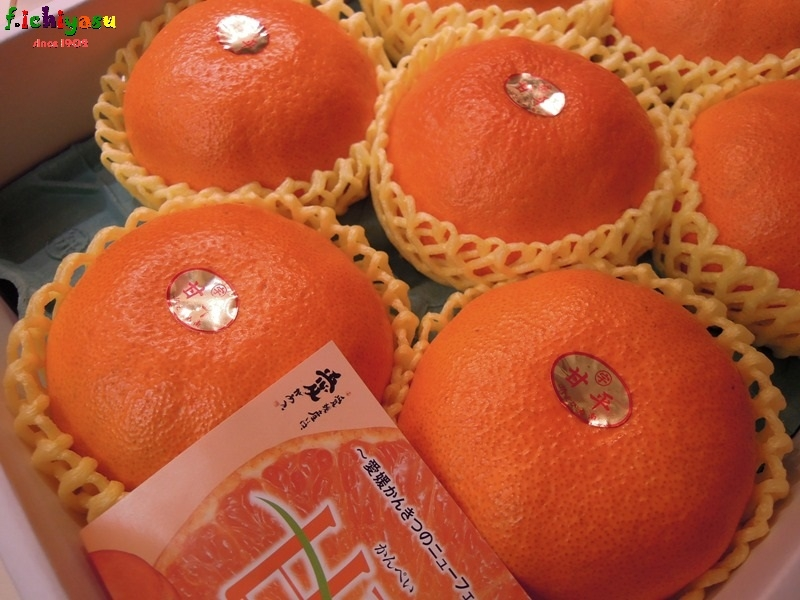 愛媛産の「甘平」 Today's Fruits ♪