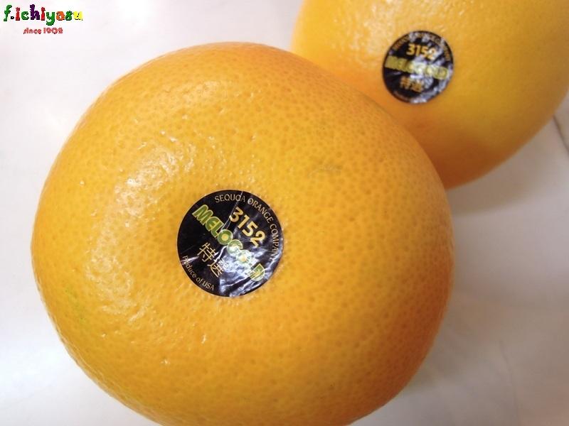 まだ「メローゴールド」有るよ かお(^^)v Today's Fruits ♪