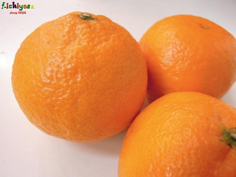 「南津海」なつみと読みます。 Today's Fruits ♪