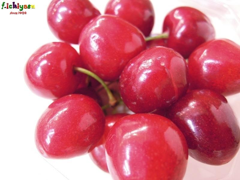 温室栽培のさくらんぼ「山形美人」 Today's Fruits ♪