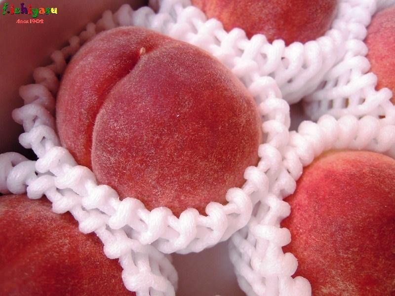 JAふえふき の温室桃「日川白鳳」 Today's Fruits ♪