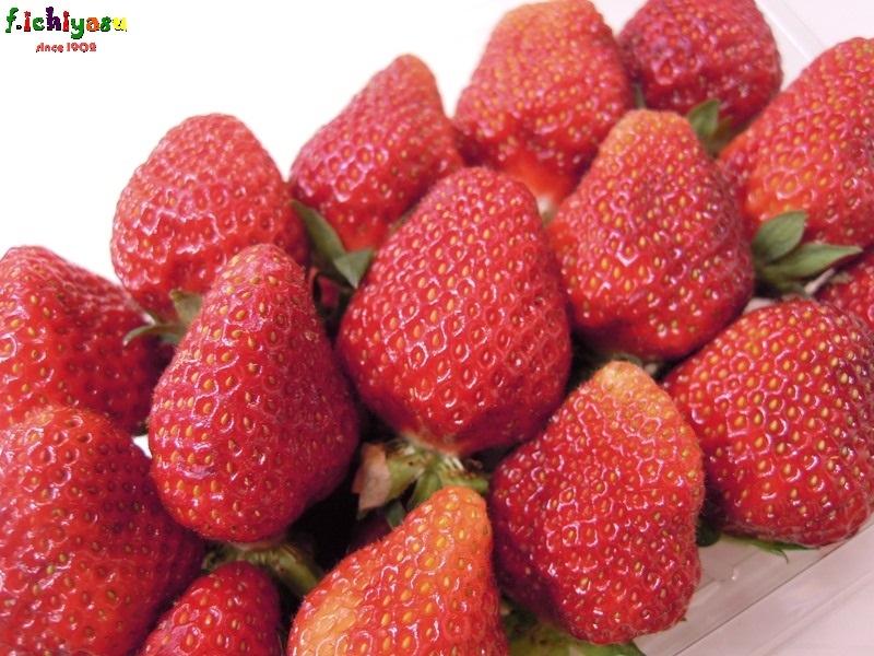 金沢産の「宝交イチゴ」出たよ! Today's Fruits ♪