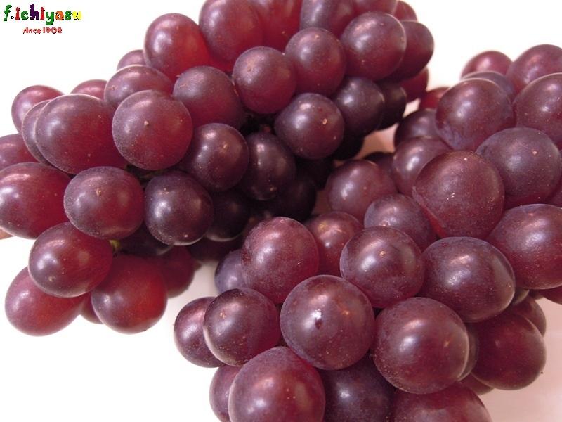 山梨産の大粒の「キングデラ」 Today's Fruits ♪
