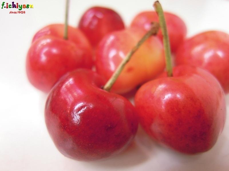 これもアメリカンチェリー! Today's Fruits ♪