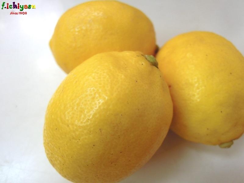 貴重品ですw「国産レモン」 Today's Fruits ♪