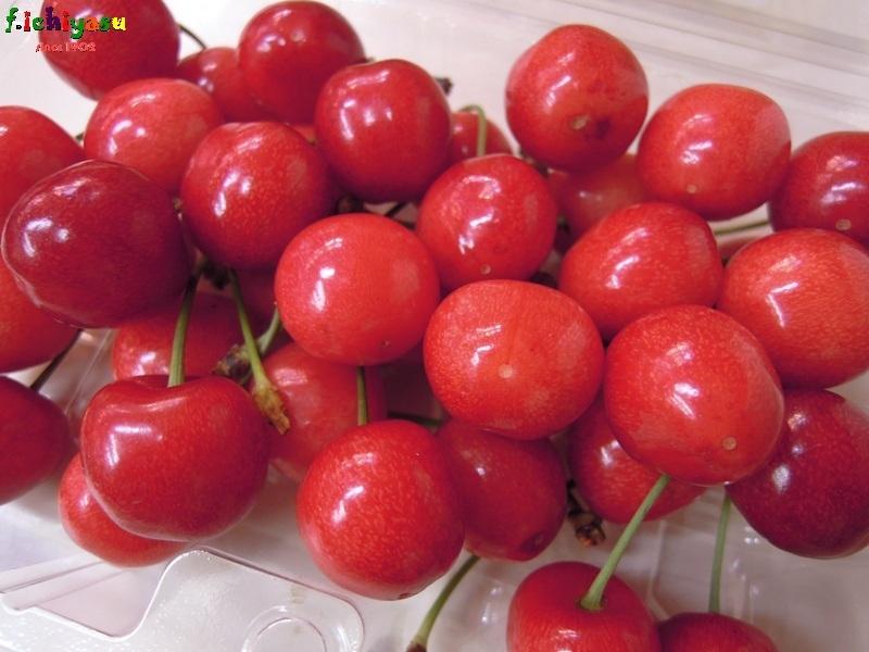 山形産の「紅さやか」 Today's Fruits ♪