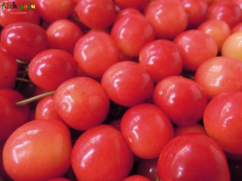 お待ちかねの「佐藤錦」登場! Today's Fruits ♪