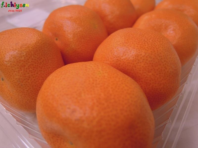 福岡・山川「はハウスみかん」 Today's Fruits ♪