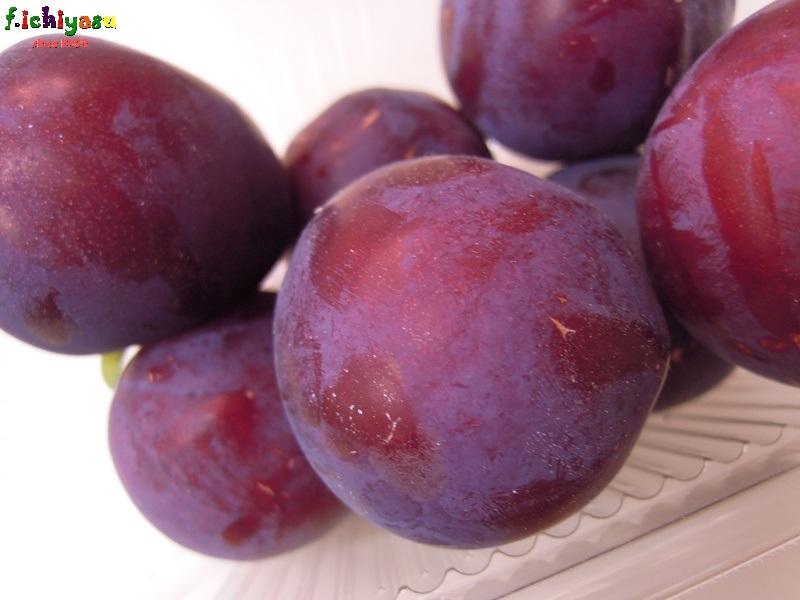 美味しいプラム「レッドビュート」 Today's Fruits ♪