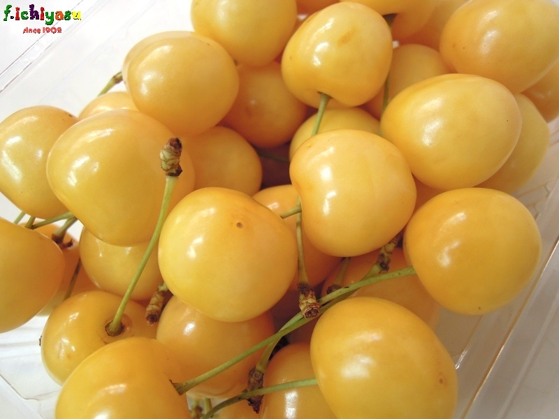 黄色いさくらんぼ「月山錦」 Today's Fruits ♪