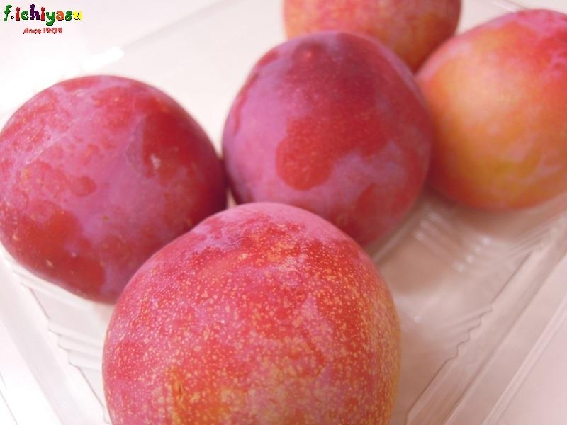 能登・押水特産のプラム「涼呂」 Today's Fruits ♪