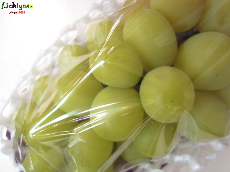 JA金沢市の「シャインマスカット」 Today's Fruits ♪