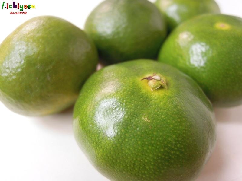 愛知・蒲郡「グリーン温室みかん」 Today's Fruits ♪