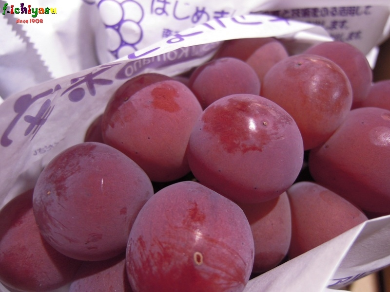 名前の由来は、当時のゴルバチョフ人気にあやかってW Today's Fruits ♪