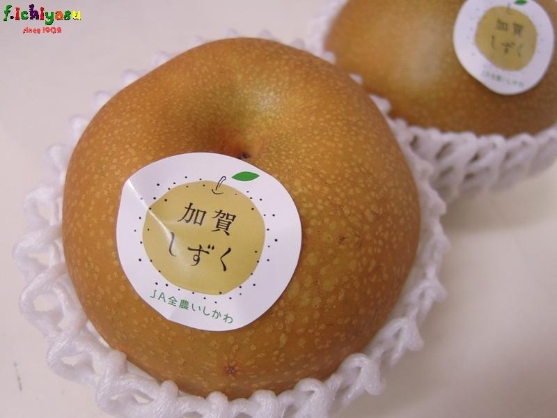 石川のブランド梨「加賀しずく」 Today's Fruits ♪