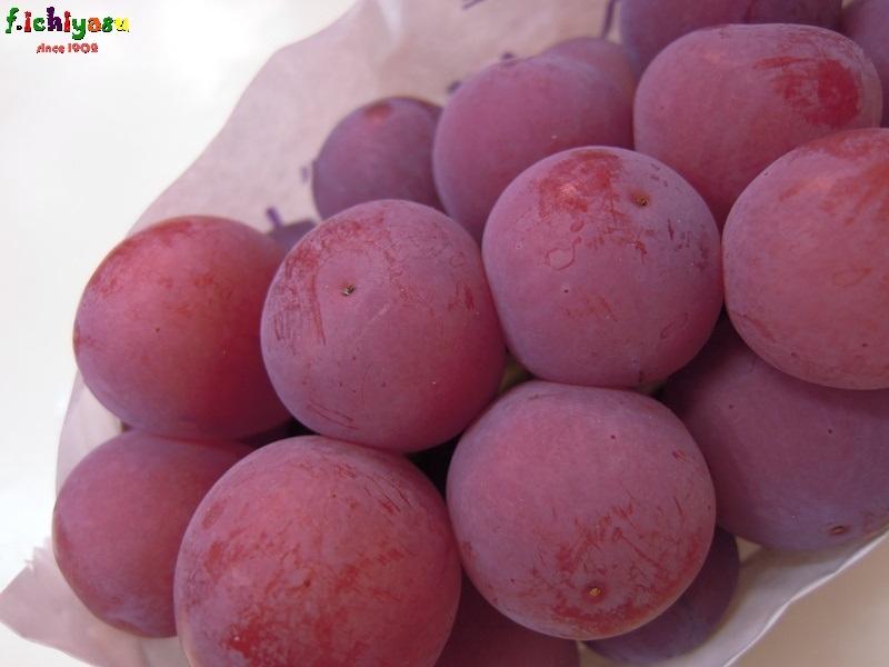 その名も「クイーンニーナ」 Today's Fruits ♪