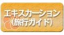 エキスカーション(旅行ガイド)