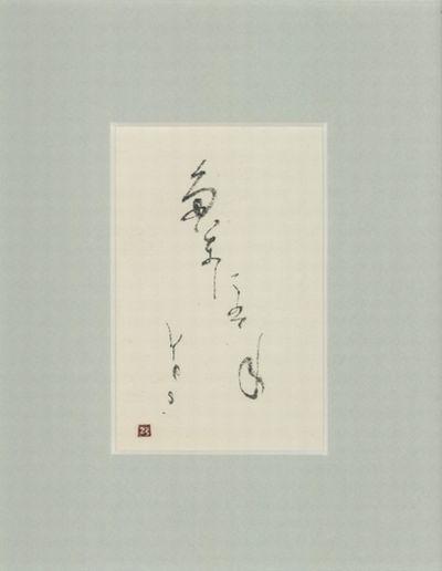 yes001_tamanihane