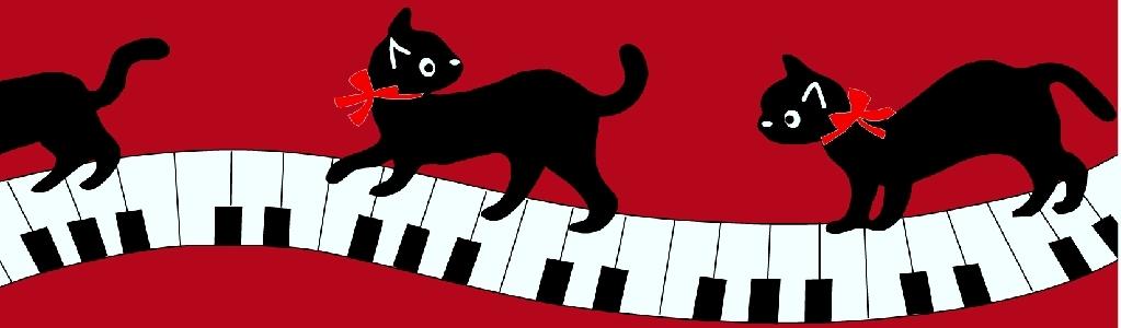 黒猫踏んじゃった