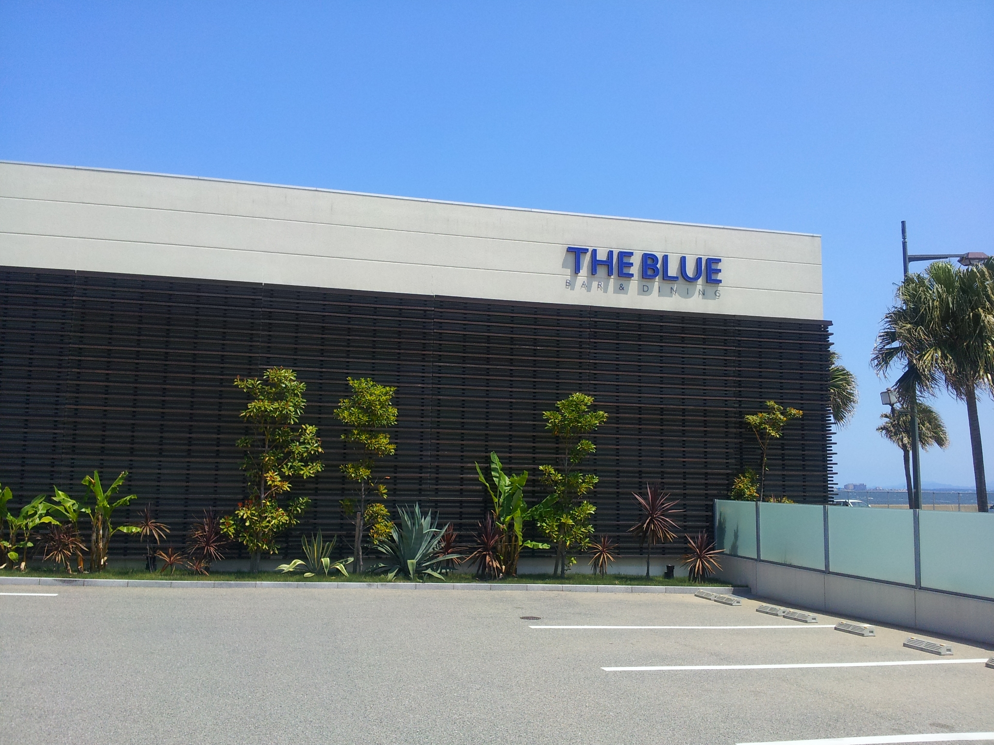 THE BULE