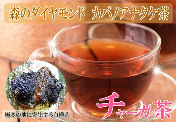 カバノアナタケ茶(かばのあなたけ茶)チャーガ茶100%