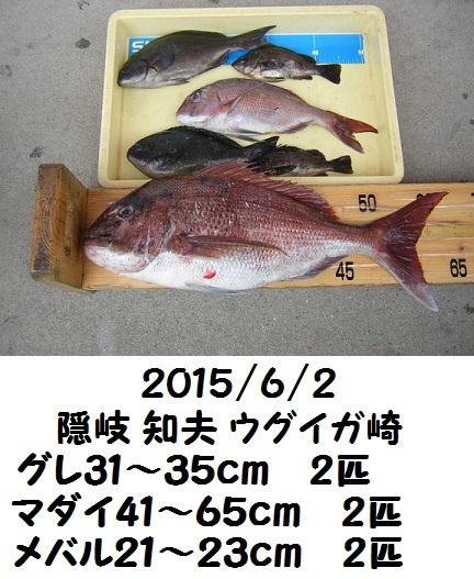 2015/6/2齋藤