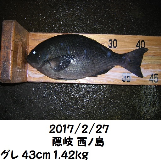 0000448521.jpg