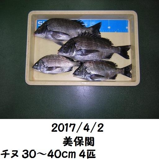 0000457419.jpg