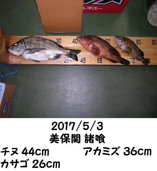 0000464846.jpg