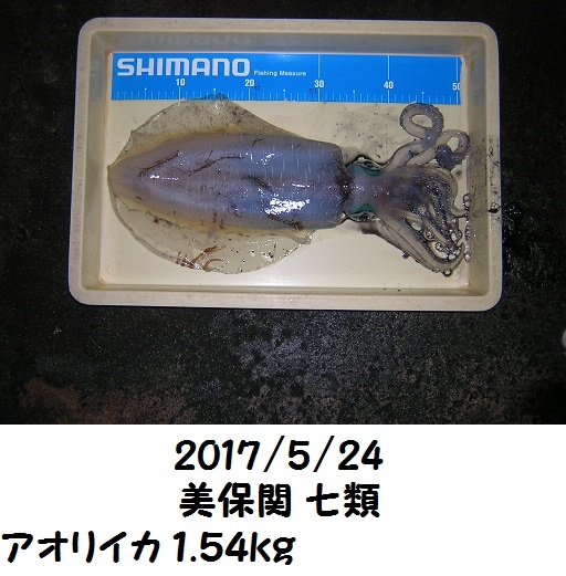0000470357.jpg