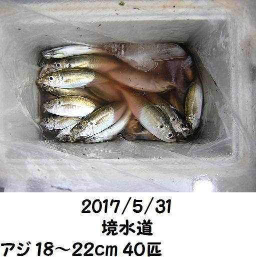 0000472101.jpg